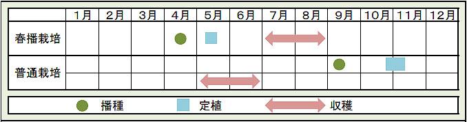 栽培カレンダー.jpg