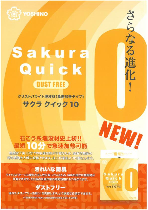 SQ10_top.jpg